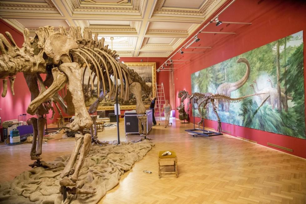 Dinoszauruszkiállítás nyílik a szegedi Móra-múzeumban