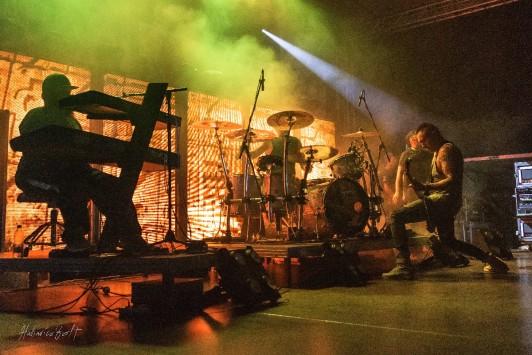 Kowalsky meg a Vega koncert (20)