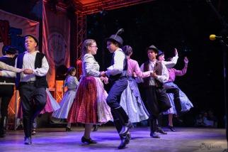 Magyar folklór a nagykárolyiak fesztiválján (23)