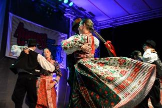 Magyar folklór a nagykárolyiak fesztiválján (27)
