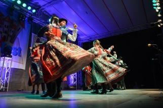Magyar folklór a nagykárolyiak fesztiválján (28)