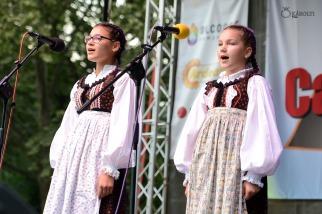 Magyar folklór a nagykárolyiak fesztiválján (7)